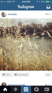 instagram river