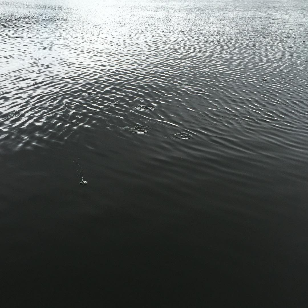 We learn to read the river: this beautiful herringbone pattern precedes larger wind waves. A steady breeze over a reach creates tiny ripples that reinforce each other, becoming swells that can become challenging for the shantyboat