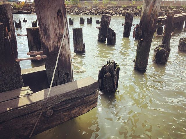 The marina of broken dreams #docks #pilings #newtowncreek #brooklyn #nyc